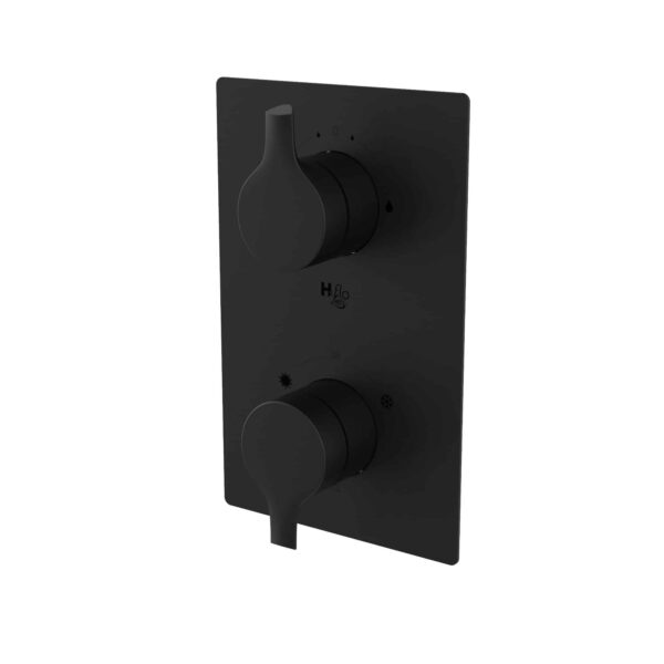 NOB98TS2TMB valve de robinet noir mat sur fond blanc